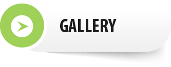 Menu button: Gallery